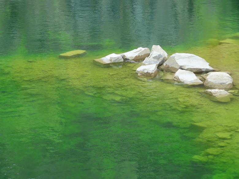 Hồ Xanh Đà Lạt (Hồ Đá Đà Lạt) - Dalat News