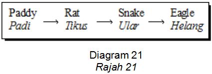 Apakah yang akan berlaku kepada populasi tikus dan ular jika sebilangan besar helang mati akibat serangan penyakit?