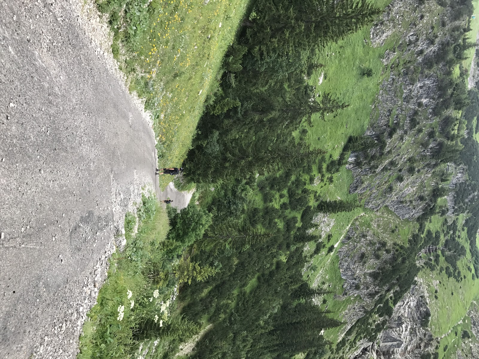 Climbing Nebelhorn by bicycle - hiker walking down steep road