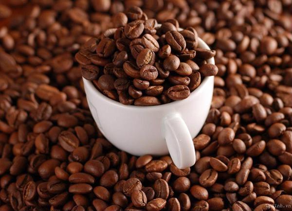 Cà phê hạt nguyên chất giá sỉ Motherland đem đến cho bạn những trải nghiệm thú vị