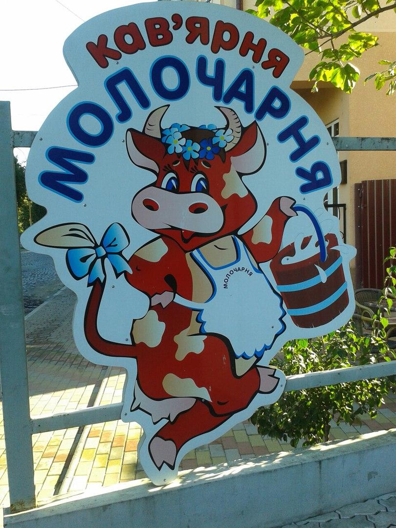 Найсмачніші сніданки в Мукачево в кав'ярні Молочарня