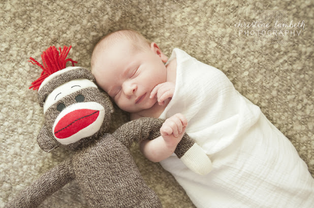 Newborn photos - swaddled with sock monkey friend