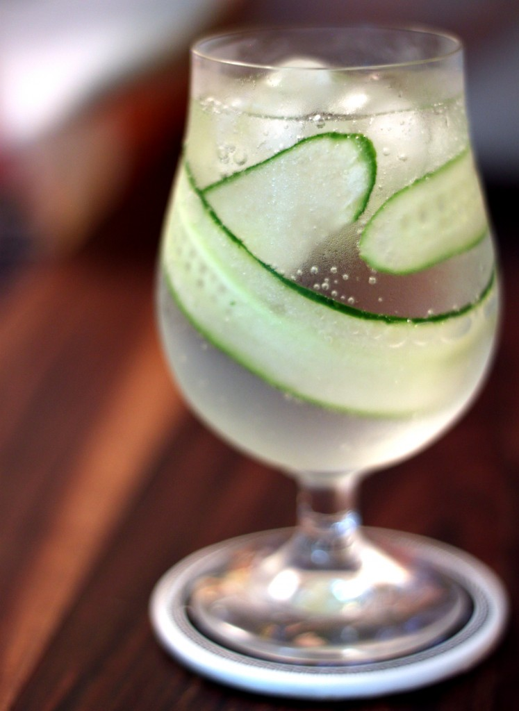 Gin com Pepino