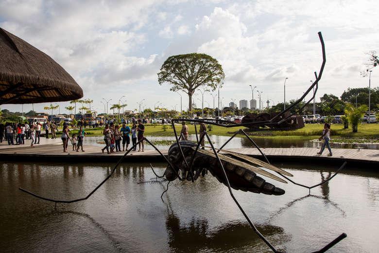 Parque do Utinga terá programação especial em julho - Crédito: Agência Belém