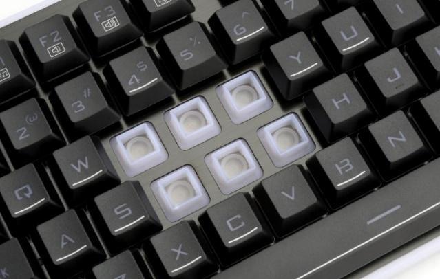 Interruptores de los teclados de membrana