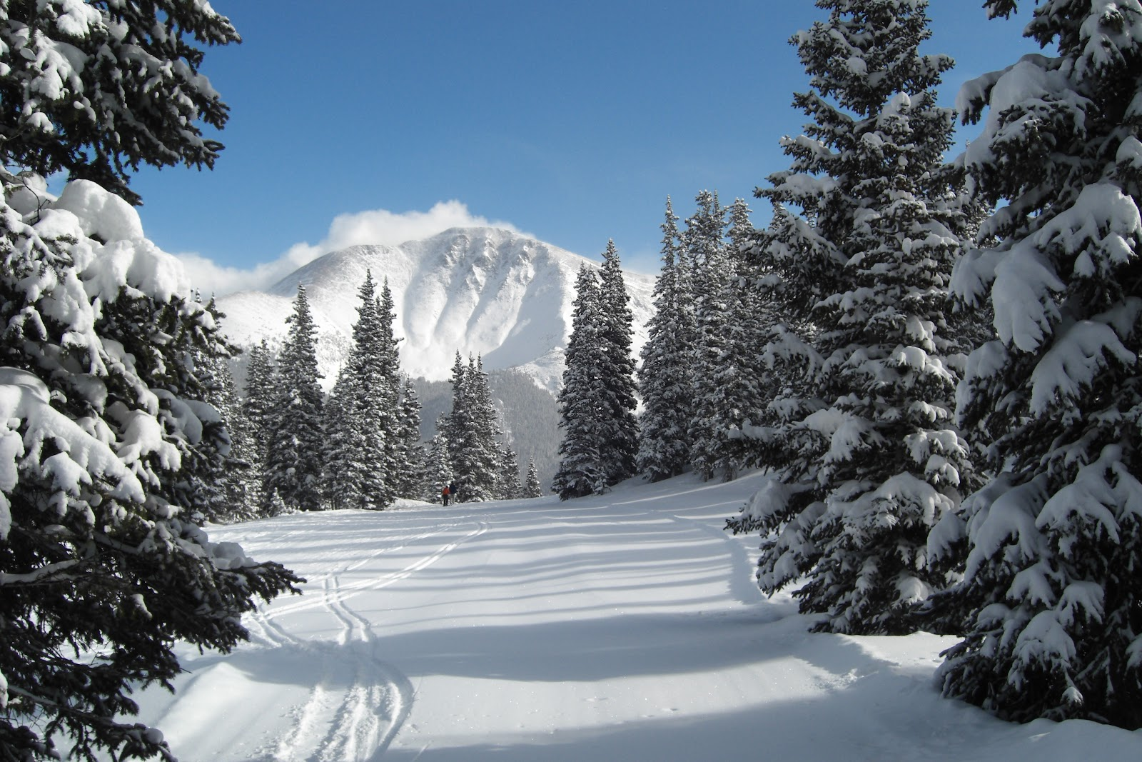 File:Parry Peak from Winter