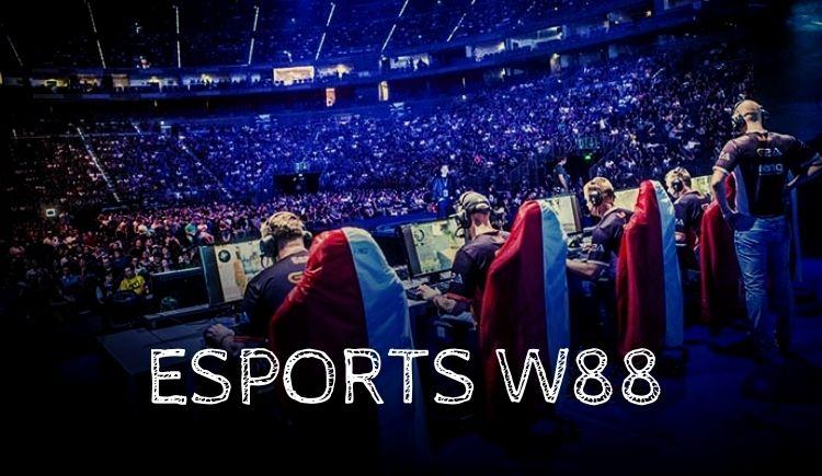 cá cược esports chi tiết tại nhà cái W88