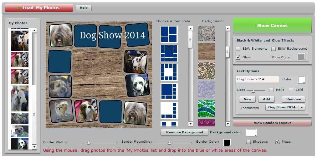 apc collage 3.jpg