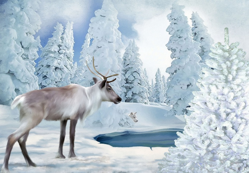 Free illustration: Freezing Time, Reindeer, Wolf, Snow - Free ...