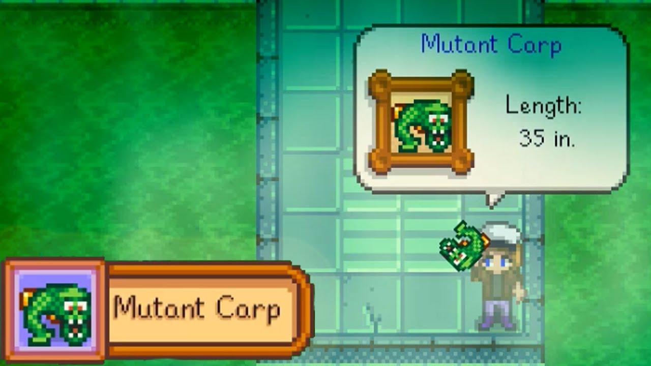 Mutant carp