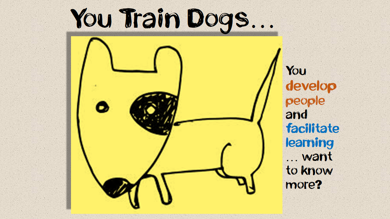 You Train Dogs.png