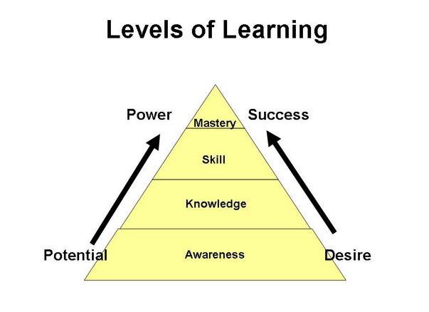 the process of learning Learning takes time and patience it is a process — a journey a self - directed learning process is arguably the most powerful model for facilitating and inspiring individual, group and organizational learning and development.