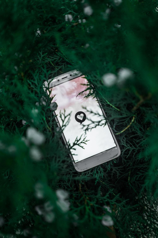 white smartphone on green grass