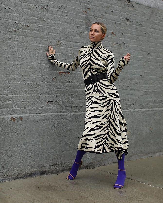 Zebra print 5