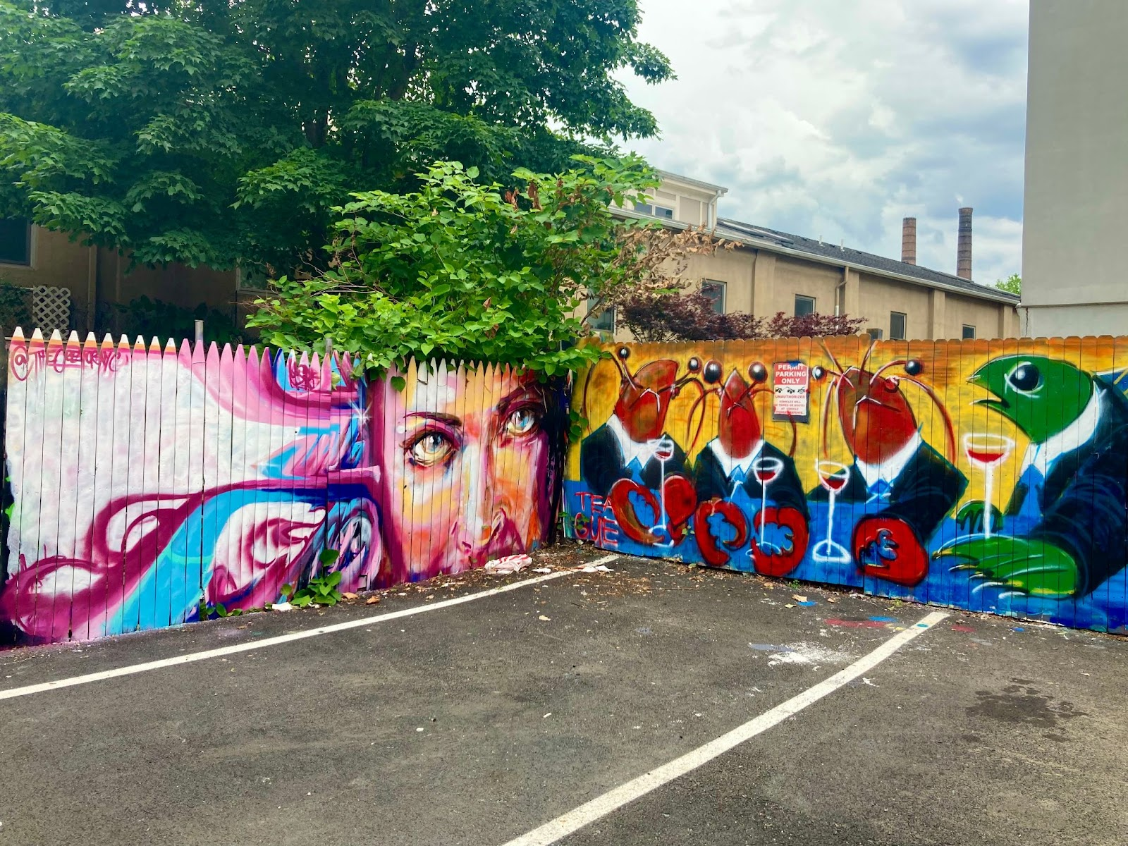 Inside Look at Jersey City's Burgeoning Street Art. Works by Manuel Alejandro Pulla and Teague Smith at this public art playground organized by JC Hundreds Mural Co. First St. & Coles St. Photo by Vittoria Benzine.