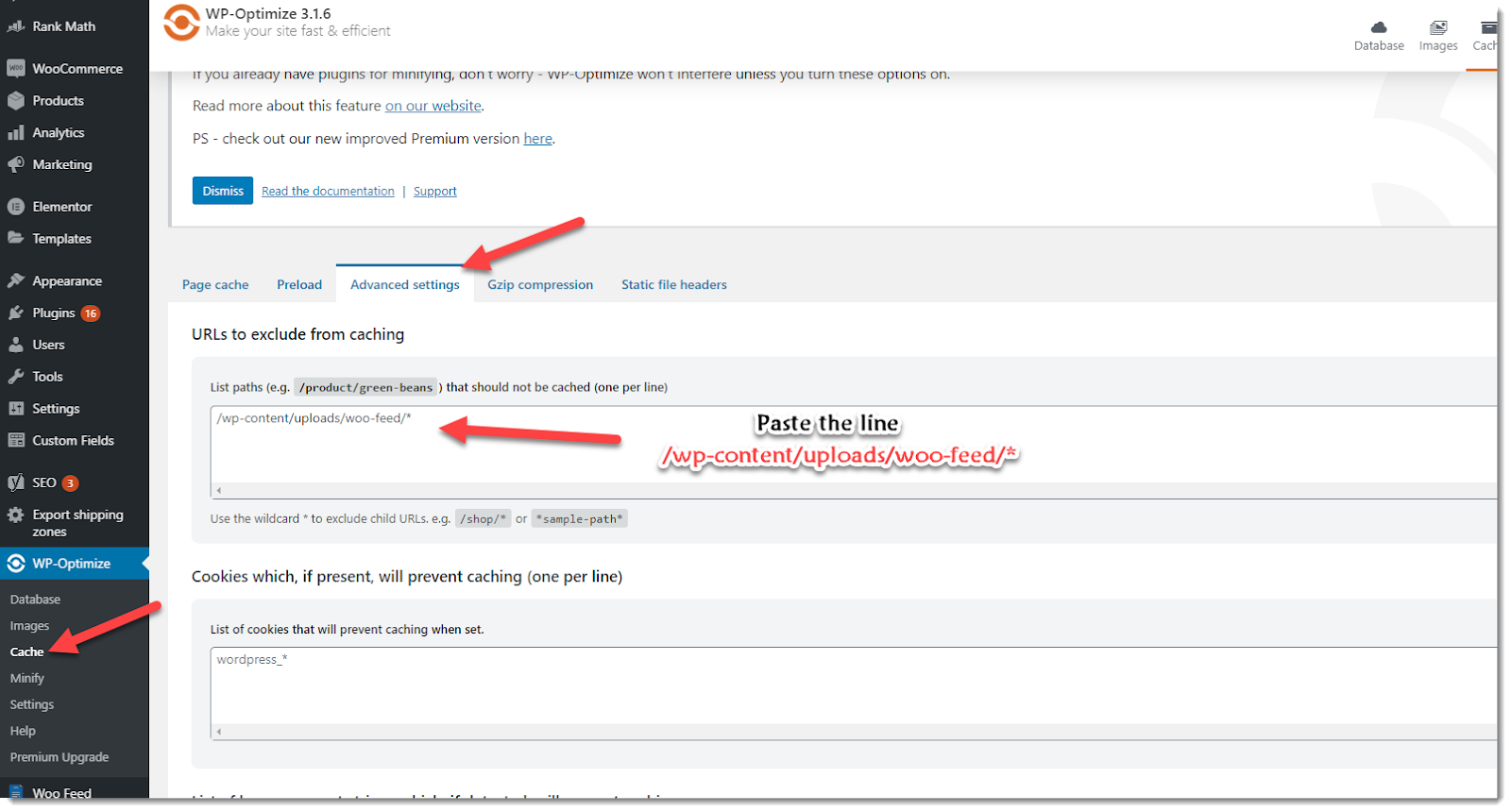 exclude feed file from WP Optimize cache