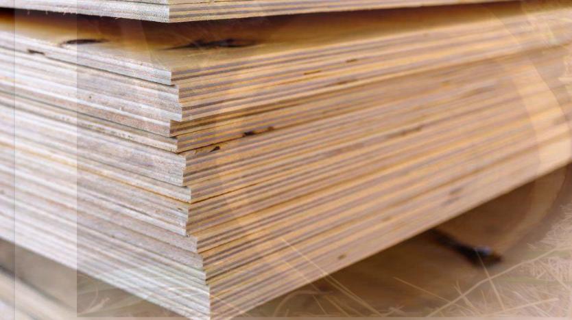 Gỗ dán gồm nhiều lớp gỗ