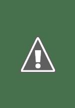 Watch Shiner Online Free in HD