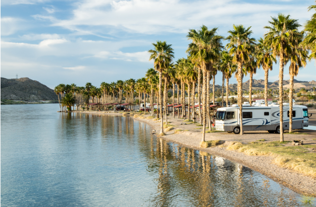rv parked among palm trees next to water