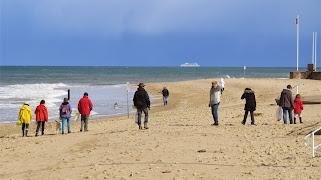 Nettoyage de la plage et des dunes