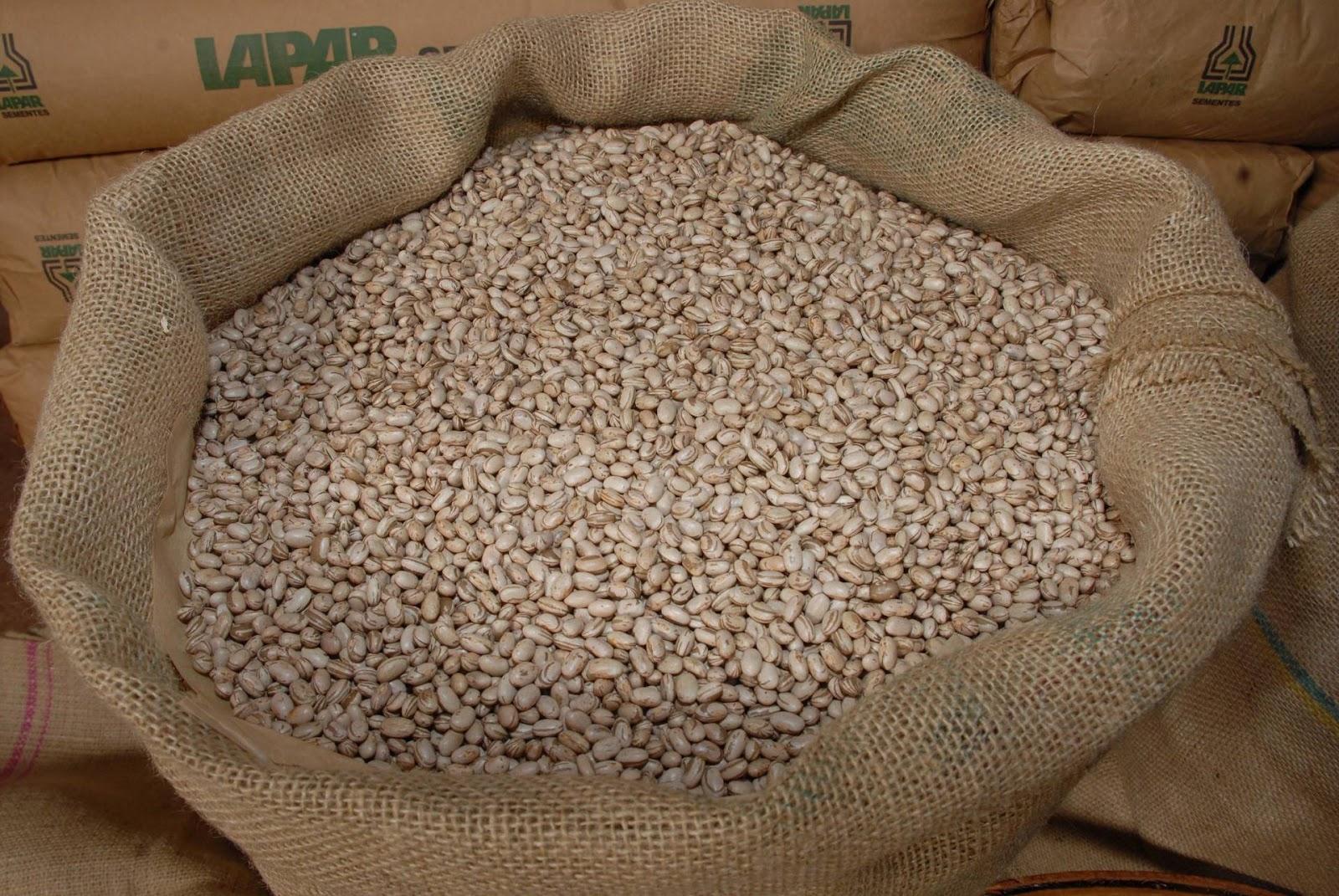 O preço da saca de 60 quilos deve continuar no patamar atual, por conta do equilíbrio entre produção e demanda nacional pelo grão. (Fonte: Agência Estadual de Notícias do Paraná/Reprodução)
