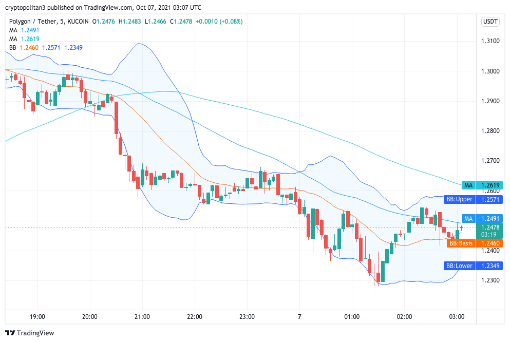 Polygon Price Analysis: MATIC still holding support at $1.25 1