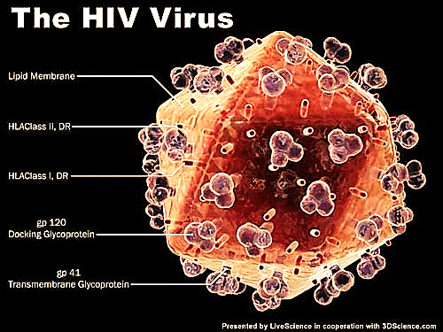 http://tiengchuong.vn/Uploaded/nguyenthilananh/2013_07_01/14741228215-HIV.jpg