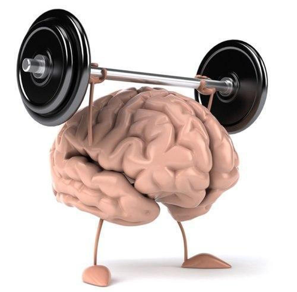 Hạt óc chó tác dụng tăng cường chức năng não bộ