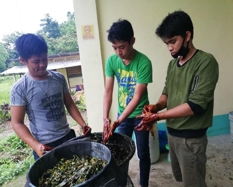 Few Students preparing Fermented Plant Juice (FPJ) for Organic Container Gardening Project at Gawad Kalinga, Isabel, Leyte last May 2019