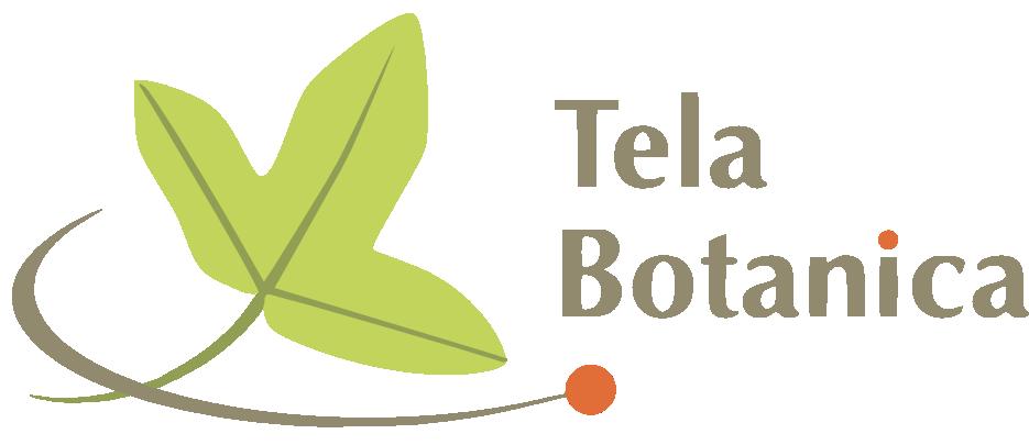 logo_telabotanica