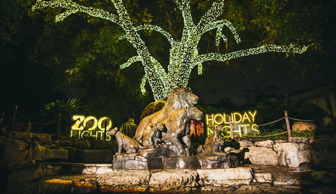 10 Holiday Events In San Antonio You Can T Miss In 2018