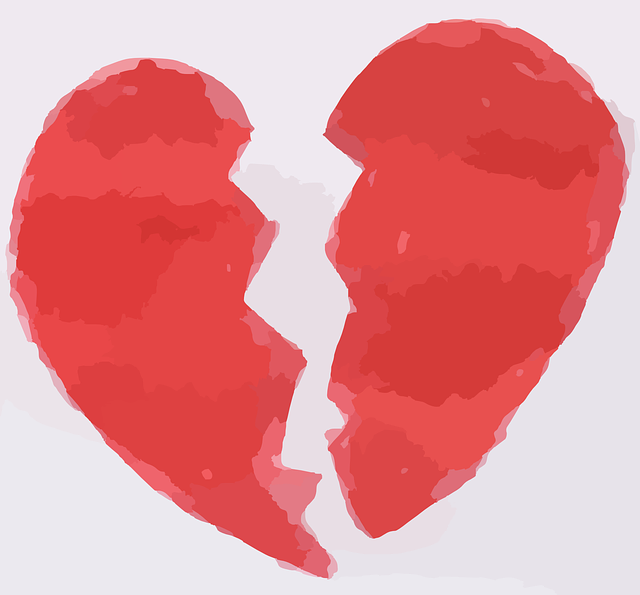 heart-297313_640.png