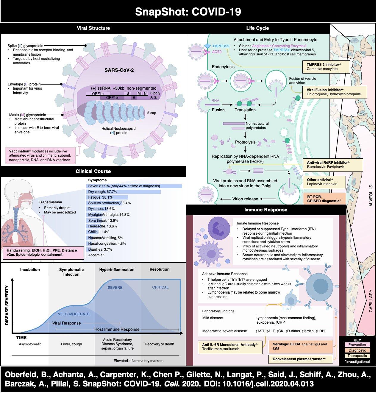 Coronavirus Disease 2019 (COVID-19) • LITFL
