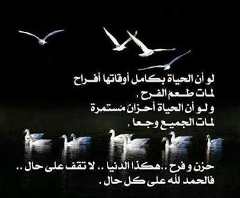 صباح الأمنيات الجميل O7wC8HZYujhKjecPLt2w