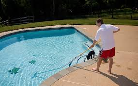 Image result for How to Keep a Home's Pool Clean without Running Pump and Filter poolinsider