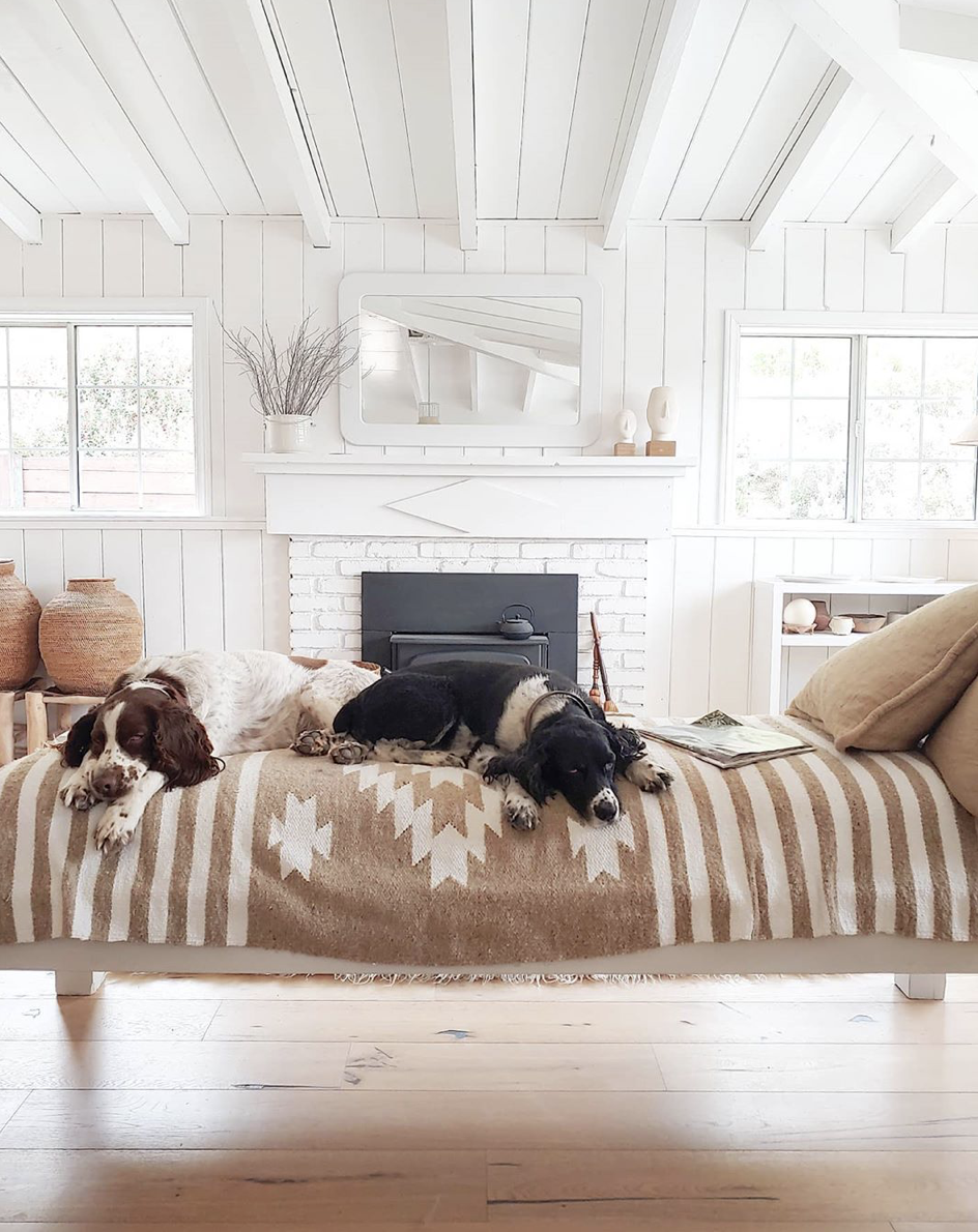 tara fust design vacation vibes at home design atlanta buckhead ga fireplace dogs lounging