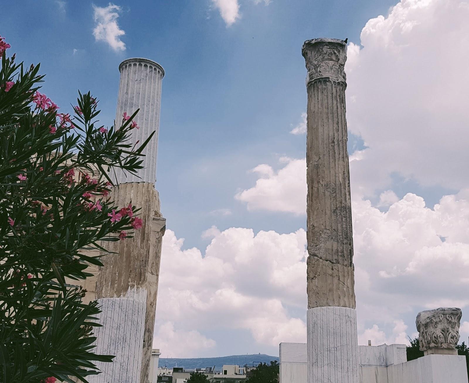 איי יוון אוכל יווני המלצות אטרקציות למטייל טיול משפחה זוגות לאן לטוס אחרי הקורונה מדינות ירוקות אתונה