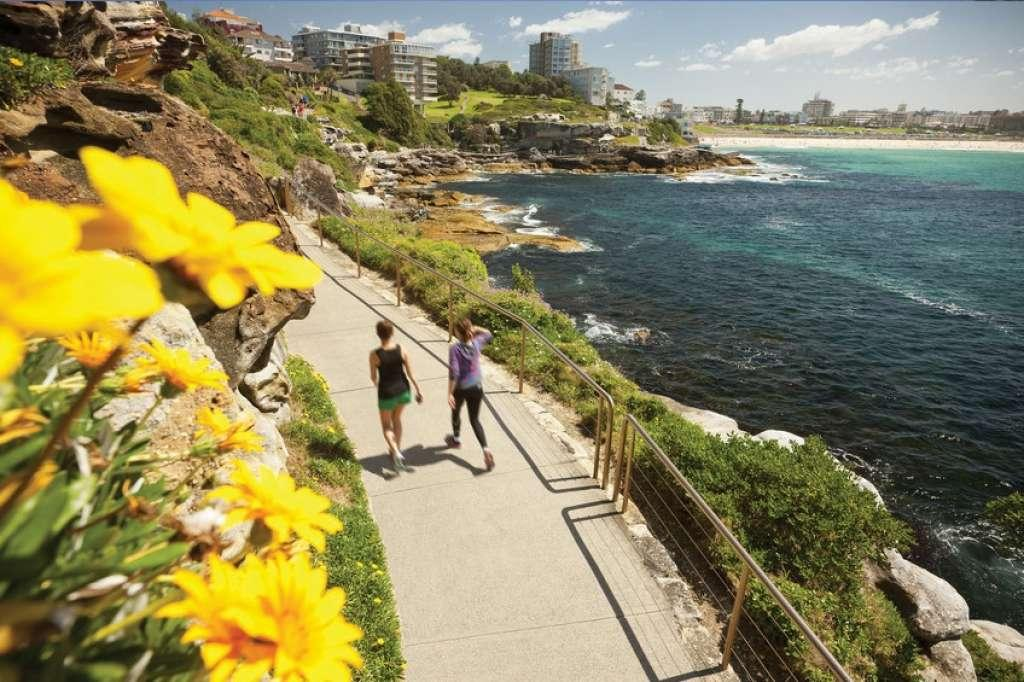 Image result for bondi to coogee walk