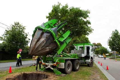 Khi nào nên sử dụng dịch vụ di dời cây xanh