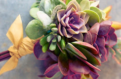 succulent wedding assorted