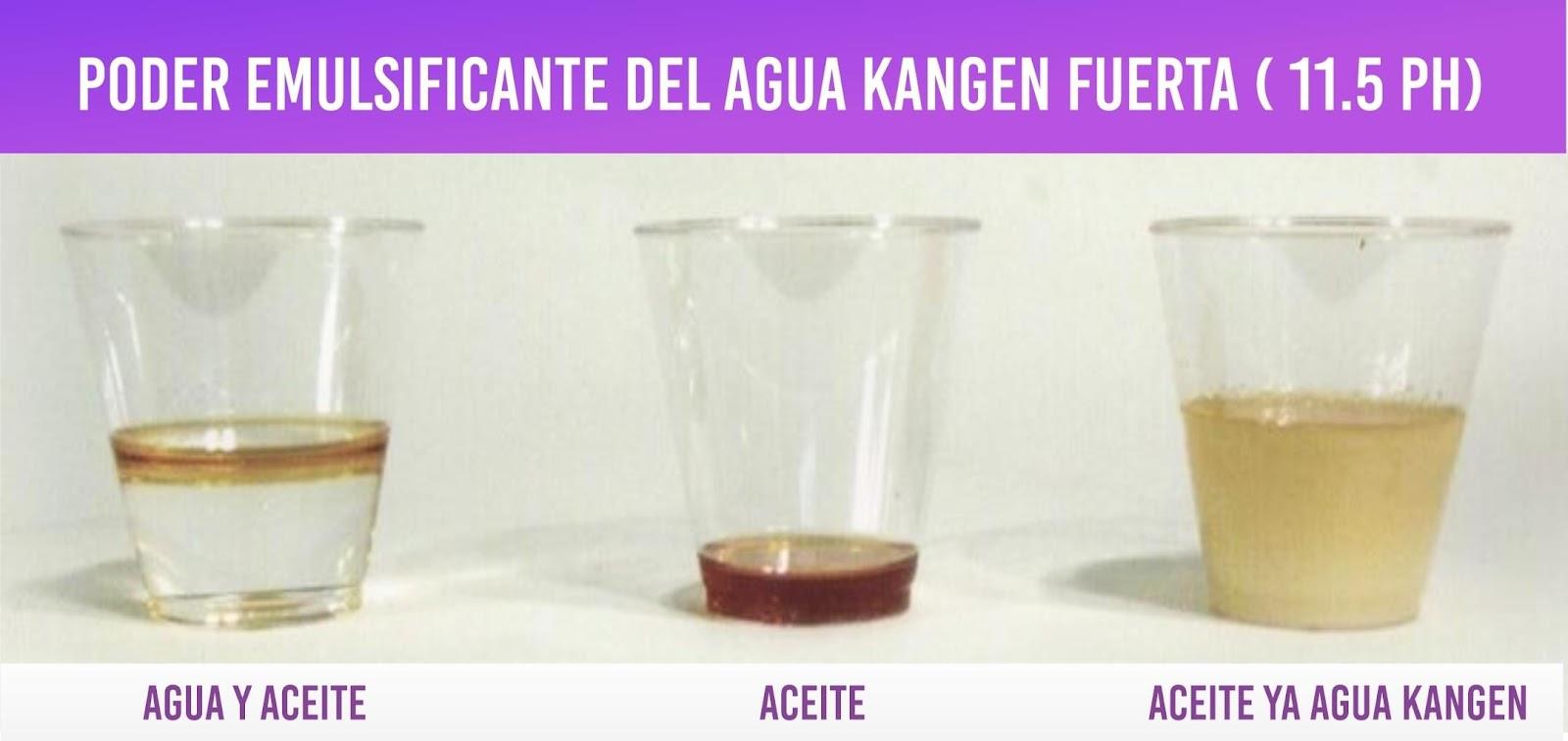 propiedades saludables del agua kangen