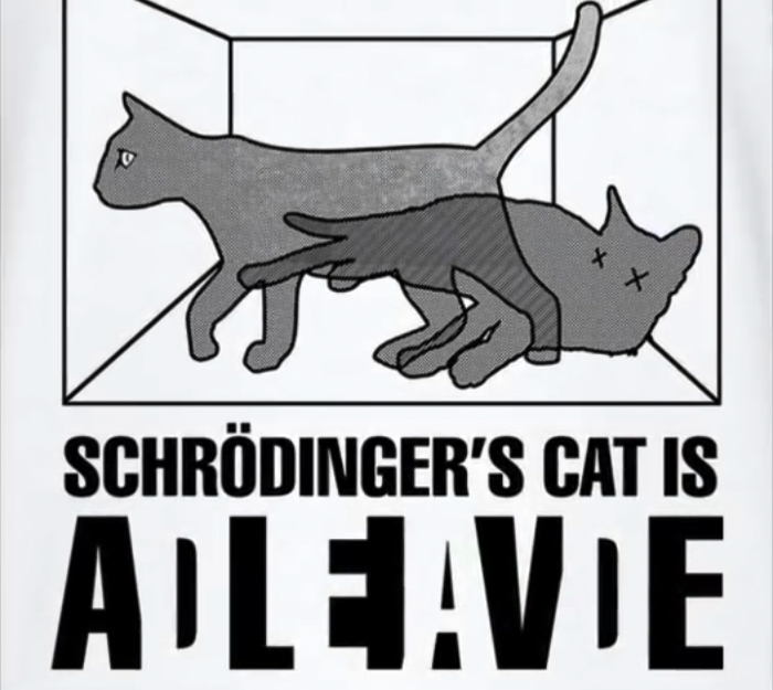 Schrödinger's Cat: Dead or Alive? Or both? Or Neither ...