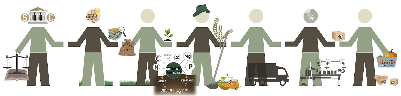 Moldova Organic Value Chain Alliance