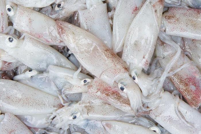 台灣東北產的小卷,因生存在較冷的水域,肉更加甜而脆。為了把甜度及口感鎖在最新鮮狀態,捕撈起後便會在船上直接分裝,並立即放入-40度凍艙保存。解凍後色澤鮮明肉質晶透。