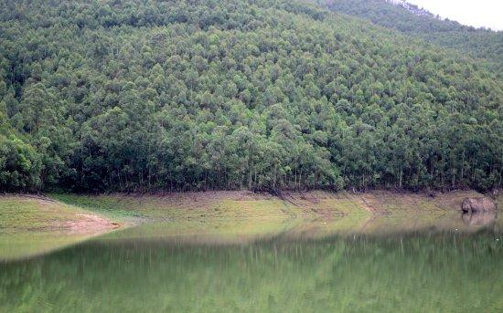 Image result for 8. Echo Point munnar images