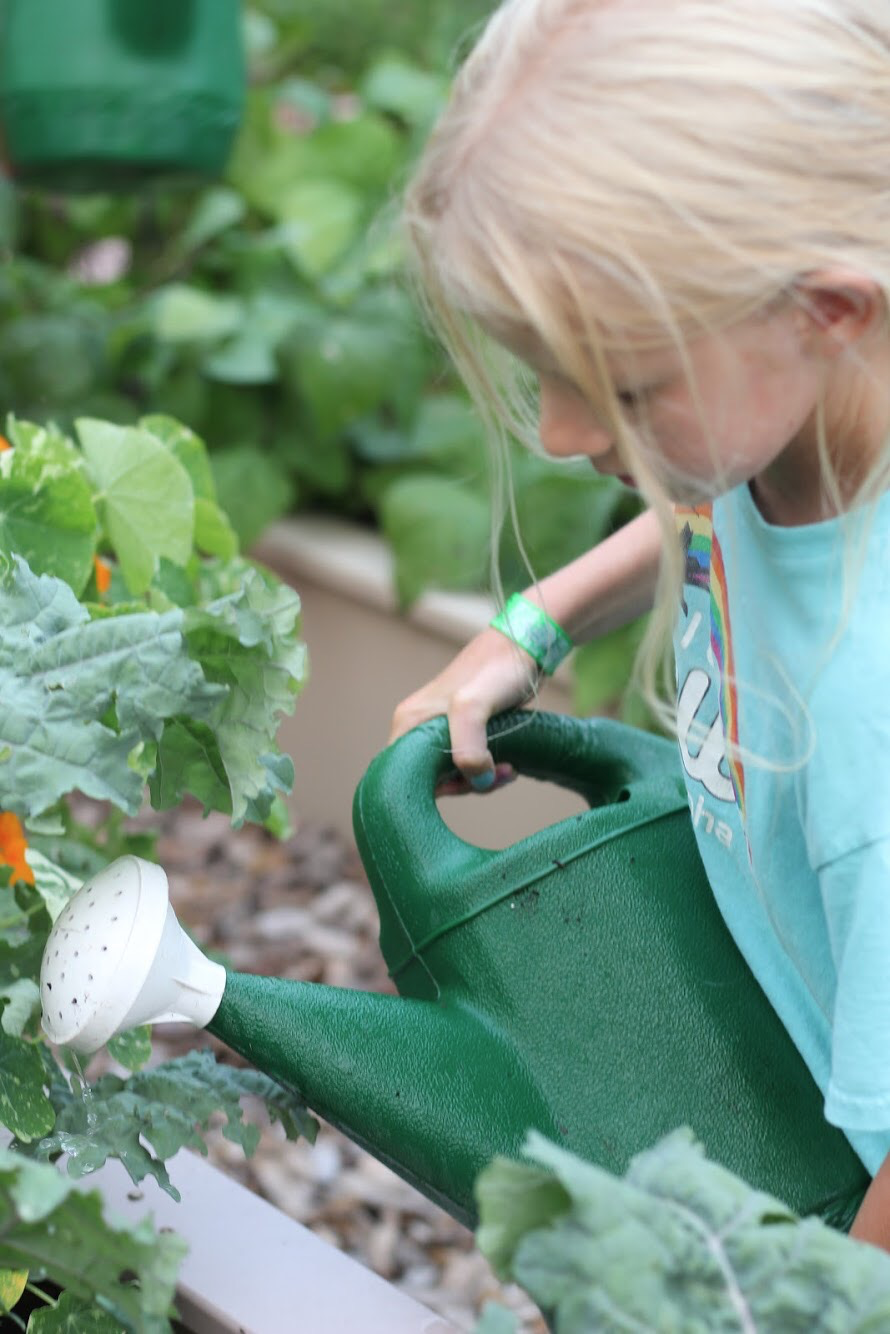 Student at Duluth Public Schools waters garden