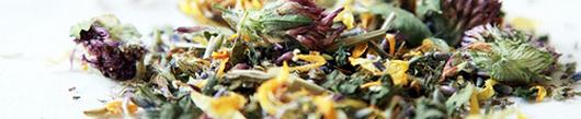 6 super blagodejnih zeliščnih čajev, ki jih ne smete spregledati!
