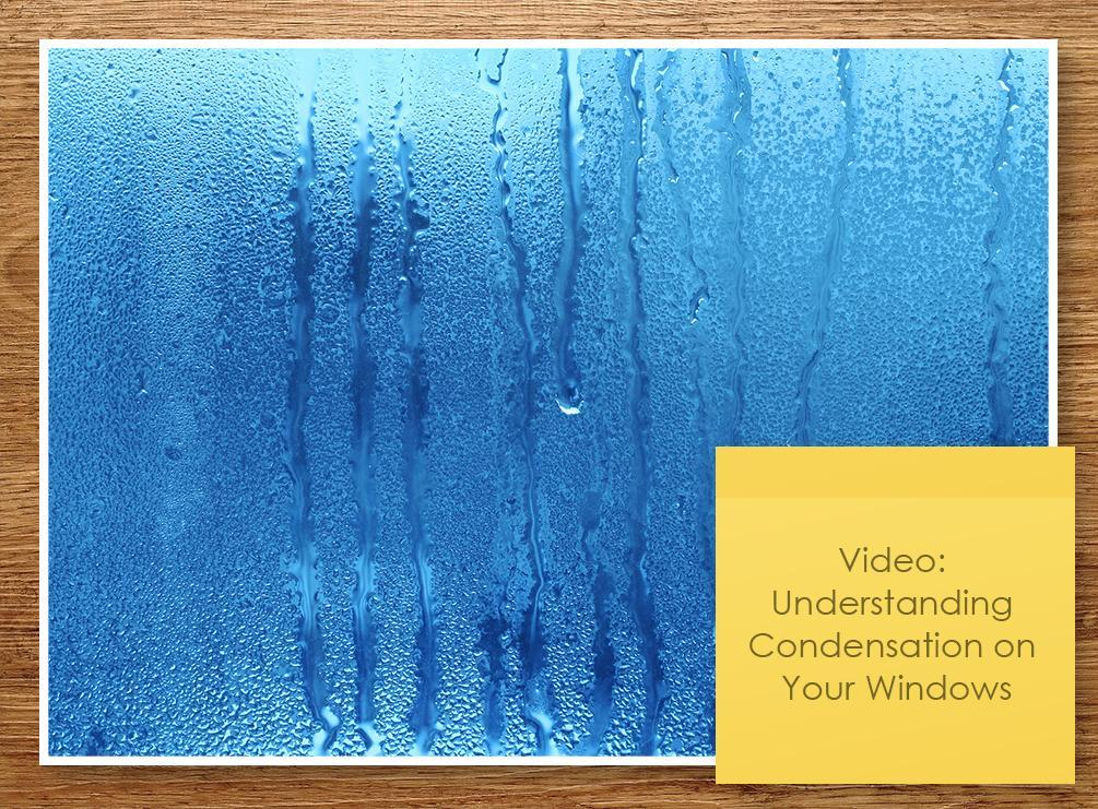 Condensation on Your Windows