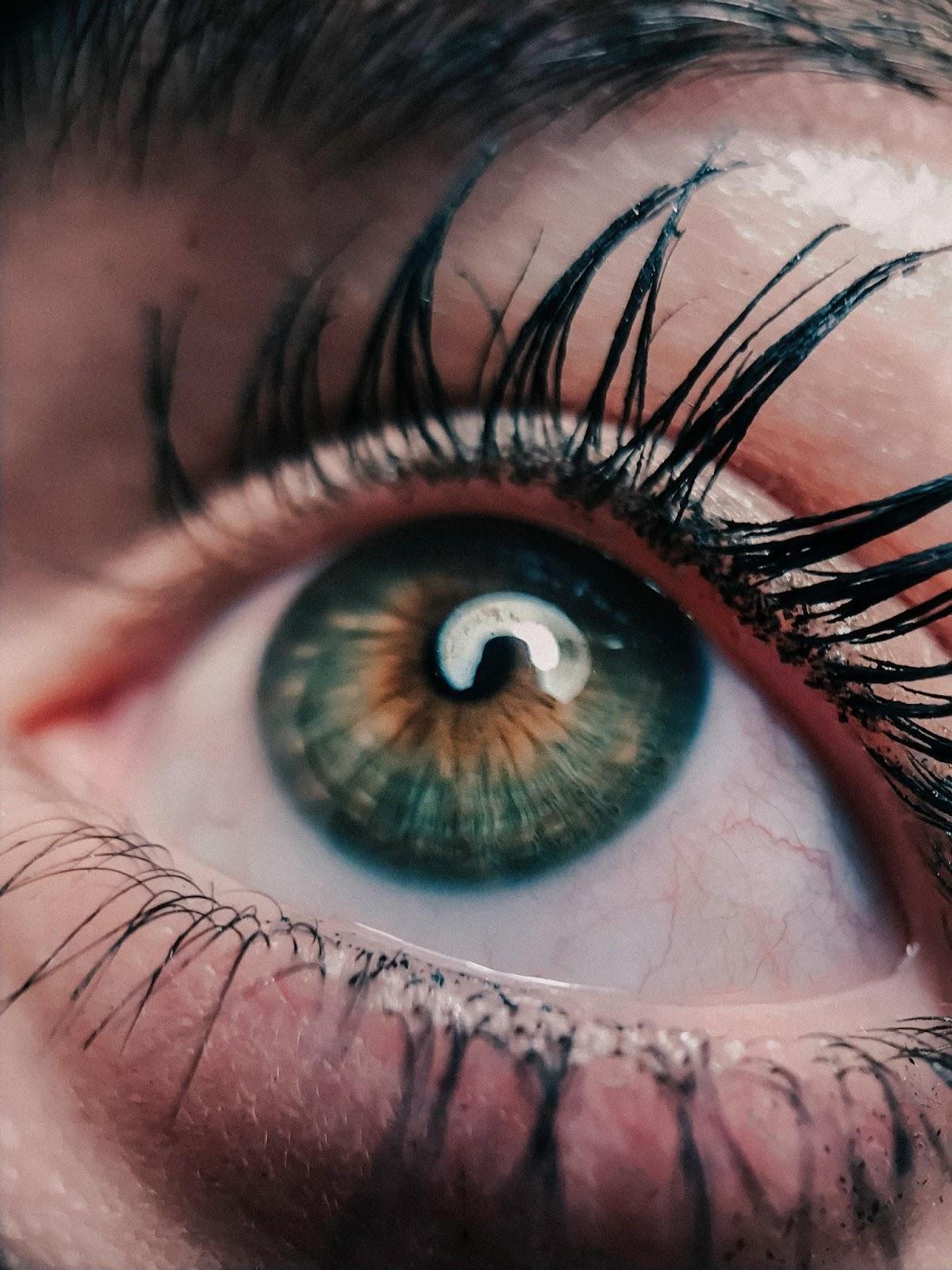 oko tęczówka