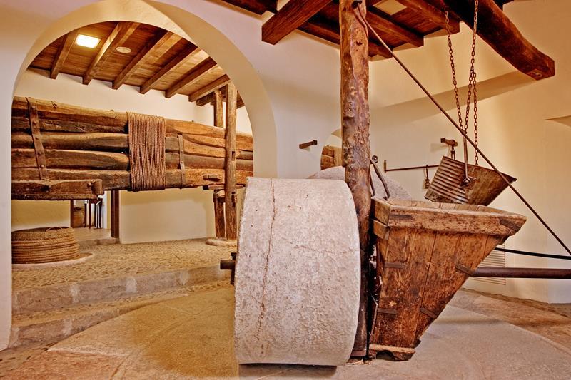 Museo-del-Aceite-DCOOP_800x533[1].jpg